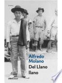 Libro de Del Llano Llano