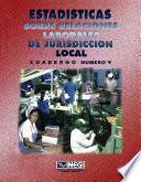 Libro de Estadísticas Sobre Relaciones Laborales De Jurisdicción Local. Cuaderno Número 9