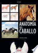 Libro de Anatomía Del Caballo: Guía Práctica Ilustrada