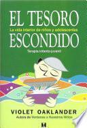Libro de El Tesoro Escondido (hidden Treasure)
