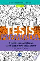 Libro de Violencias Colectivas