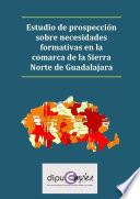 Libro de Estudio De Prospección Sobre Necesidades Formativas En La Comarca De La Sierra Norte De Guadalajara
