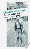 Libro de Chavales Del Arroyo