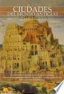 Libro de Breve Historia De Las Ciudades Del Mundo Antiguo