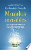 Libro de Mundos Invisibles