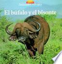 Libro de El Búfalo Y El Bisonte