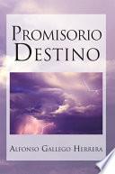 Libro de Promisorio Destino