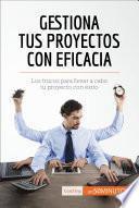 Libro de La Gestión De Proyectos