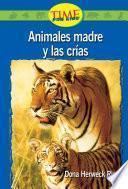 Libro de Animales Madre Y Las Crias / Animal Mothers And Babies