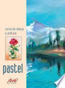 Libro de Curso De Dibujo Y Pintura. Pastel