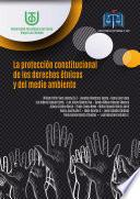 Libro de La Protección Constitucional De Los Derechos Étnicos Y Del Medio Ambiente