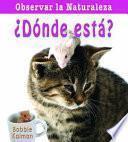 Libro de Donde Esta? = Where Is It?