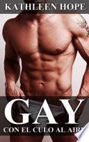 Libro de Gay: Con El Culo Al Aire