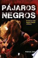 Libro de Pájaros Negros, El Heavy Metal Chileno