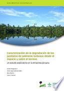 Libro de Caracterización De La Degradación De Los Pantanos De Palmeras Turbosos Desde El Espacio Y Sobre El Terreno