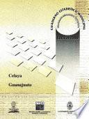 Libro de Celaya Estado De Guanajuato. Cuaderno Estadístico Municipal 2000
