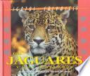 Libro de El Juguar Y El Leopardo (the Jaguar And The Leopard)