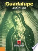 Libro de Guadalupe