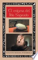 Libro de El Enigma Del Ibis Sagrado
