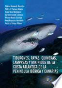Libro de Tiburones, Rayas, Quimeras, Lampreas Y Mixínidos De La Península Ibérica Y Canarias