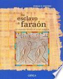 Libro de De Esclavo A Faraón