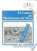 Libro de El Cultivo De Meristemas De Yuca