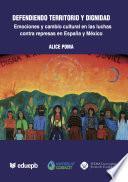 Libro de Defendiendo Territorio Y Dignidad: Emociones Y Cambio Cultural En Luchas Contra Represas En España Y México