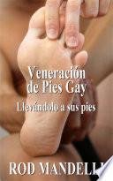 Libro de Veneración De Pies Gay #1: Llevándolo A Sus Pies