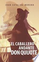 Libro de El Caballero Andante Don Quijote
