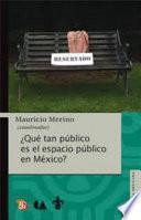Libro de ¿qué Tan Público Es El Espacio Público En México?