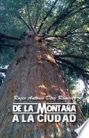 Libro de De La MontaÑa A La Ciudad