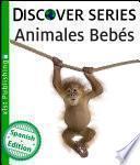Libro de Animales Bebés