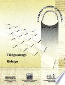 Libro de Tianguistengo Estado De Hidalgo. Cuaderno Estadístico Municipal 2000