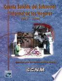 Libro de Cuenta Satélite Del Subsector Informal De Los Hogares 1993 1998. Cuentas Por Sectores Institucionales. Scnm