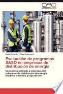 Libro de Evaluación De Programas S&so En Empresas De Distribución De Energía