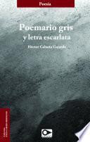 Libro de Poemario Gris Y Letra Escarlata