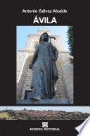 Libro de Ávila