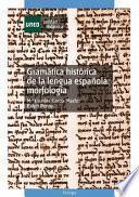 Libro de GramÁtica HistÓrica De La Lengua EspaÑola: MorfologÍa