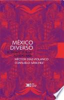 Libro de México Diverso