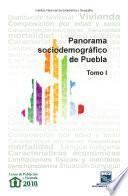 Libro de Panorama Sociodemográfico De Puebla
