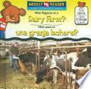 Libro de What Happens At A Dairy Farm?/que Pasa En Una Granja Lechera?