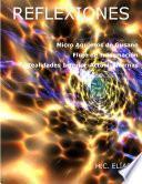 Libro de Micro Agujeros De Gusano Flujo De Información Entre Realidades Alternas, Inferior Y Superior