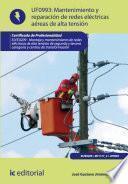 Libro de Mantenimiento De Redes Eléctricas Aéreas De Alta Tensión. Elee0209