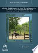 Libro de Interpelaciones Interculturales En El Currículo De Las Escuelas Del Retorno: Referentes Para Vislumbrar El Posconflicto En Colombia