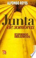 Libro de Junta De Sombras