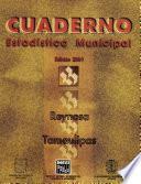 Libro de Reynosa Tamaulipas. Cuaderno Estadístico Municipal 2001