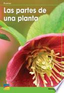Libro de Las Partes De Una Planta