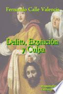 Libro de Delito ExpiaciÃ3n Y Culpa