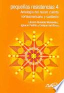 Libro de Pequeñas Resistencias: Antología Del Nuevo Cuento Norteamericano Y Caribeño