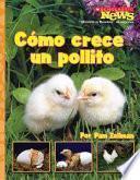 Libro de Cómo Crece Un Pollito